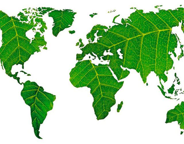 El aprendizaje-servicio y la ecología integral