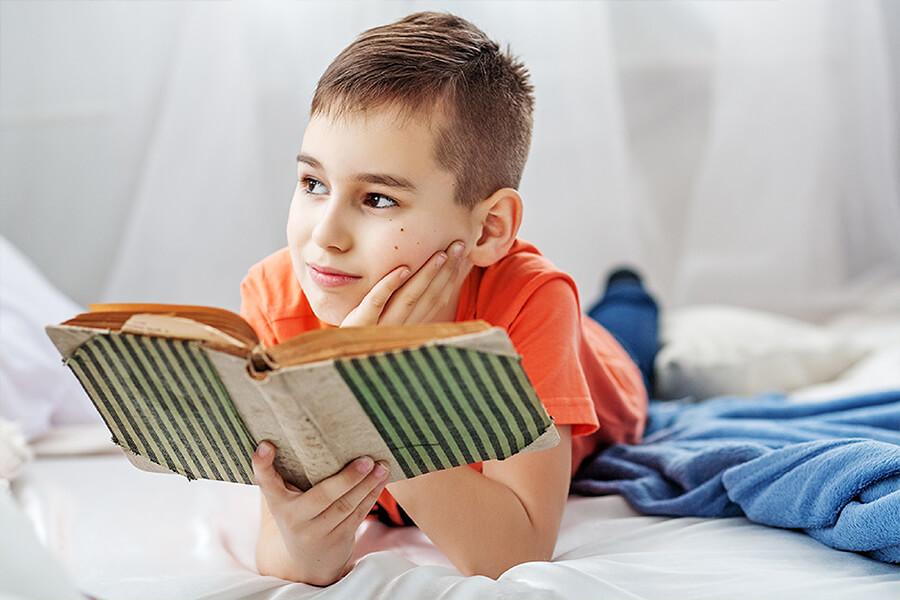 ¿Cómo desarrollar el plan lector a distancia?